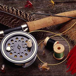 Охотничьи и рыболовные магазины Каргаполья